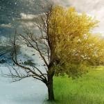 Продвижение сайта по сезонным запросам