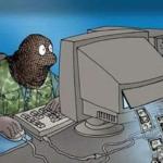 Как бороться с DDoS-атакам или защита от ddos атак