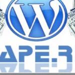 Стоит ли размещать на сайте код Сапы